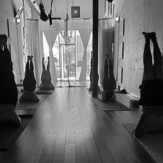 Move mindfully into a new week! . . . . .  #monkeyingaround #aerialyogaclass #freedom #yingyoga #yinyang #austinyoga #cedarpark #keepitlocal #nonfussy #movementismedicine #asana #practice #loveyourself #selflove #downdog #sunsalutation #ashtanga #hatha #breathe #inhale #exhale #love #peace #keepaustinfit #flyyoga #beherenow #meetmeonthemat #yinyang #aerialyoga #austinyogacommunity #플라잉요가